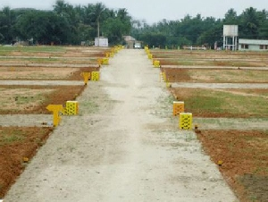 This is DTCP Approved plot.gatedcommunity on road